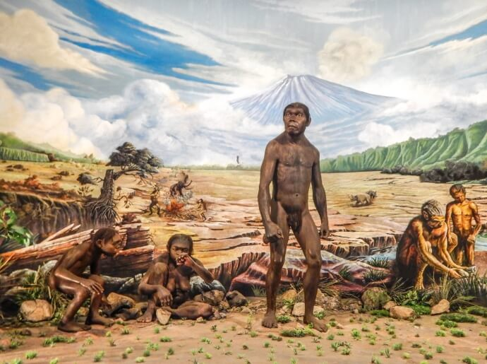 visit-to-the-sangiran-museum